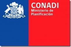 Juicio laboral condena a CONADI por despido injustificado