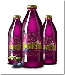 Korü lanza nueva variedad de jugo de árandano-maqui