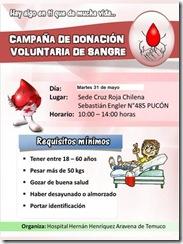 Campaña de donación de sangre en Pucón