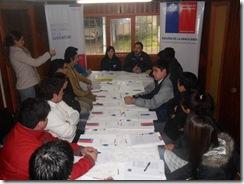 Con excelentes resultados partieron los Consejos Regionales de Juventud en La Araucanía.