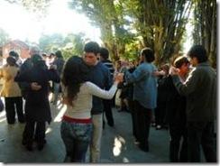 La Danza maravilló a La Araucanía