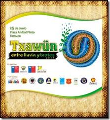 """""""Trawun: entre lluvia y brotes"""": invitan a monumental encuentro intercultural"""