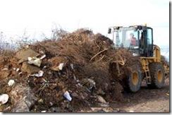 Municipio retiró cerca de 100 toneladas de basura en distintos sectores de Temuco
