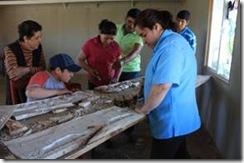 Entre el 15 y 26 de  junio: comitiva cultural capacitará a artesanos de barrio en Vilcún