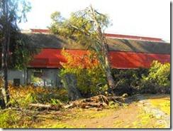 Se inicia reparación de Gimnasio y Municipalidad de Villarrica