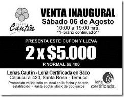 Entregarán cupones de descuento para compra de leña seca en el centro de Temuco