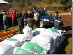 Continuaron las entregas de concentrado animal para agricultores en Villarrica