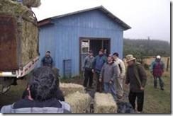 Llevaron apoyo a campesinos de Carahue afectados por emergencia climática