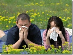 Problema se manifiesta principalmente en primavera y verano: Una de cada cuatro personas es alérgica