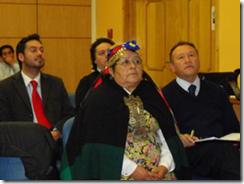 Comunidades mapuches reflexionaron sobre alcances interculturales de salud en la región