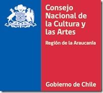 Investigadores temuquenses realizan primer estudio científico del guitarrón chileno
