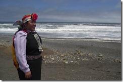 Ana Llao: desde La Araucania, primera mujer mapuche y primera mayoría al Consejo Nacional de Conadi