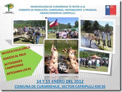 La Fiesta del Cordero se realizará en Catripulli