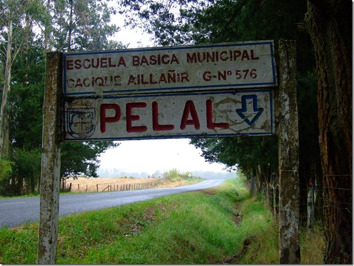 terreno_qp_pelales 087