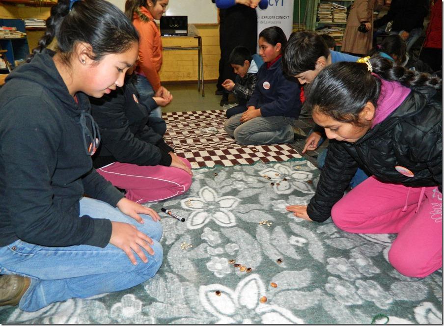 Juegos Ancestrales Mapuche 1