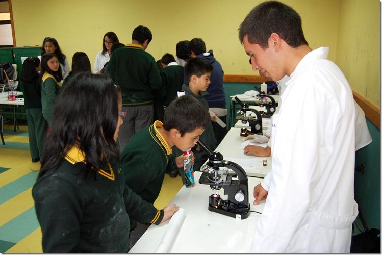 Bioquímica Millaray 2