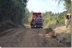 Mejoramiento caminos rurales