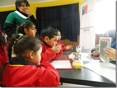 Ciencia itinerante Colegio Adenauer de Melipeuco 4