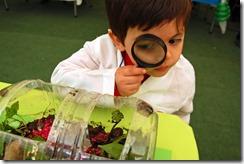 3-¬ Feria Talleres Tus Competencias en Ciencias Regi ¦n de La Araucan ¡a 1