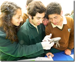 Pedagogía en Ciencias en Acción 1