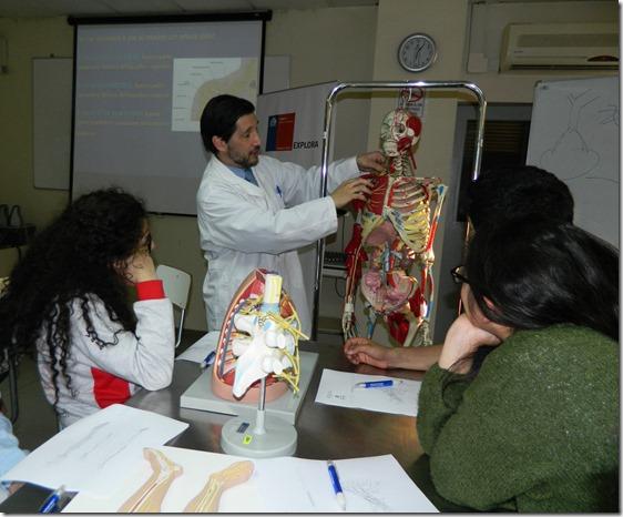 Taller de Anatomía Colegio Concepción 16