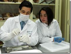 Taller de Anatomía Colegio Montessori 4