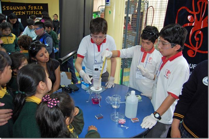 Feria 2ª Feria Escolar de Ciencia y Tecnología para Niños y Niñas de Establecimientos Educacionales de Temuco 3