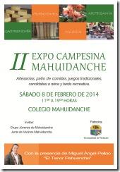 expomahuidanche2