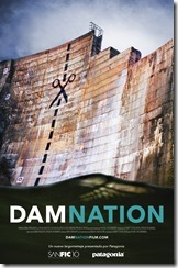 poster oficial DamNation - Chile