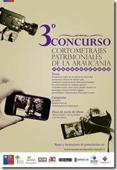 AFICHE CONCURSO PATRIM 54 X 37 (2)