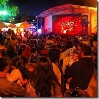 FOTO festival pucón blues 1