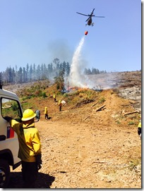 combate forestal