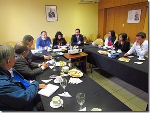 Comité Regional Producciòn Limpia Los Rïos 1
