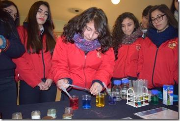ciencia en acción (1)