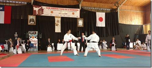 FOTO campeonato karate 2