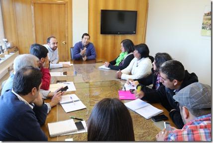 Dirigentes de Comunidad Juan Cayupi de Freire  reunidos con Director Regional de Vialidad (2)