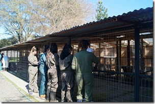 FOTO visita refugio canino 3