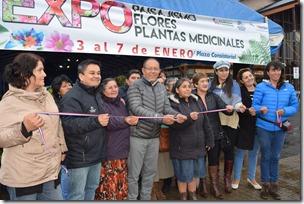Expo Paisajismo Villarrica 2018