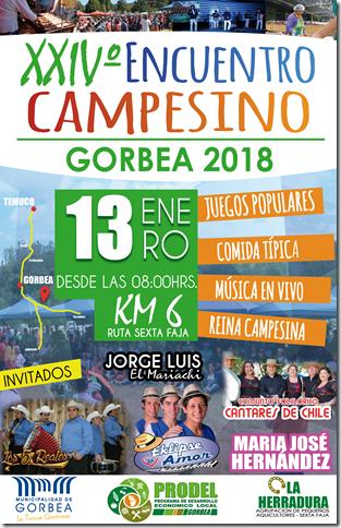 afiche encuentro 2018