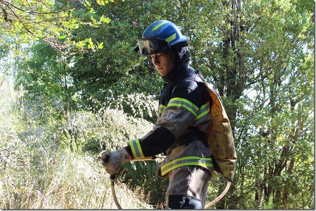 1 Brigada Forestal Cerro N_ielol 4