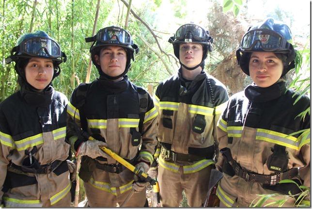 1 Brigada Forestal Cerro N_ielol 8