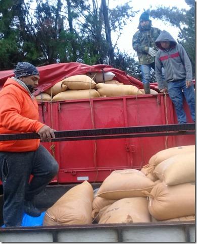 FOTO entrega cereales 2