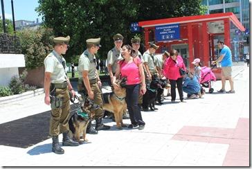 Patrullajes caninos