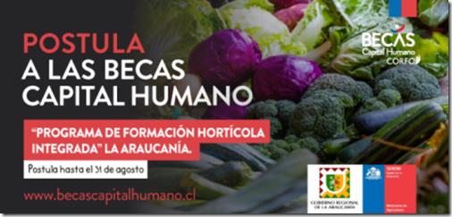 2020.08.12_PFC_horticola_TW