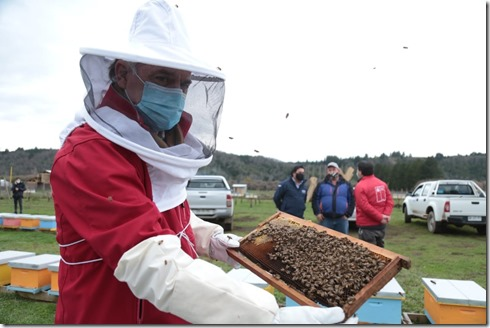 Dia de la miel2