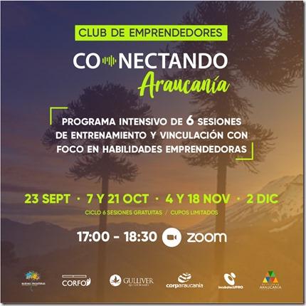 Conectando Araucanía_programa