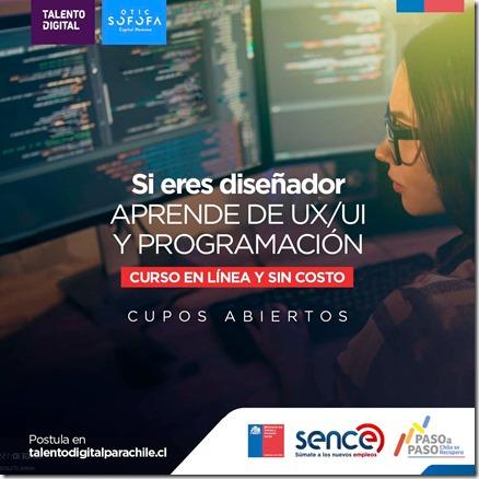 Grafica Talento Digital 23 11 2020 (1)
