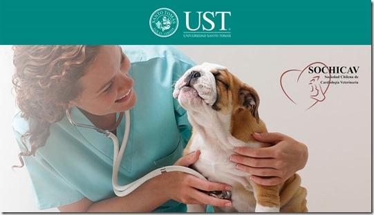 Medicina veterinaria (2) (1)