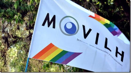 bandera-movilh