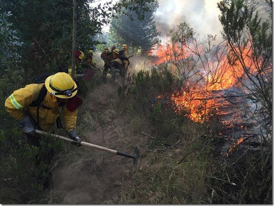incendios en el campo Gentileza Conaf